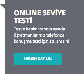 online-seviye-testi